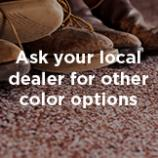Ask your local dealer for other color options